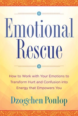 emotional rescue book cover