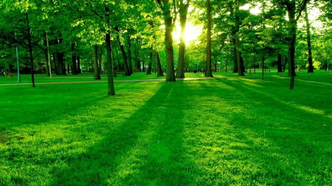 4-Nature-Wallpapers-2014-1_cDEviqY