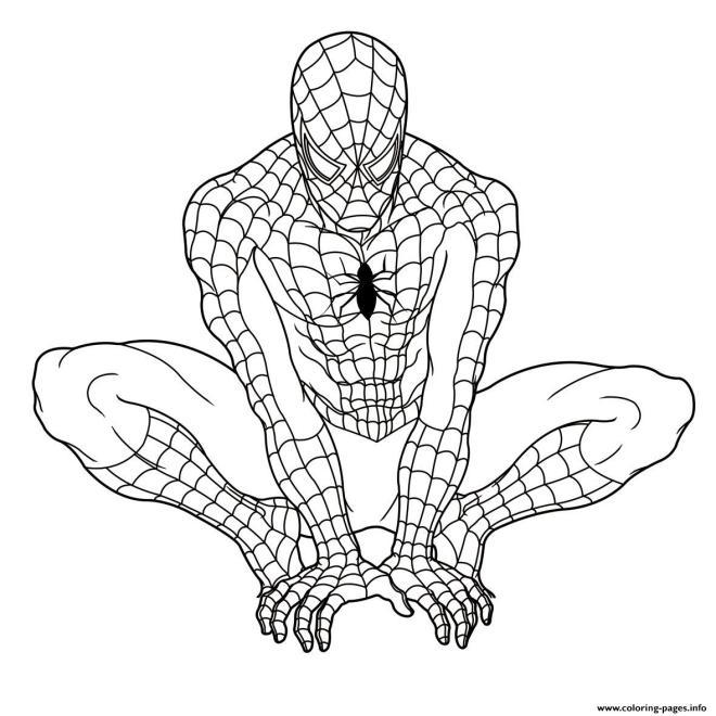 1452798958ultimate-spiderman-s894b