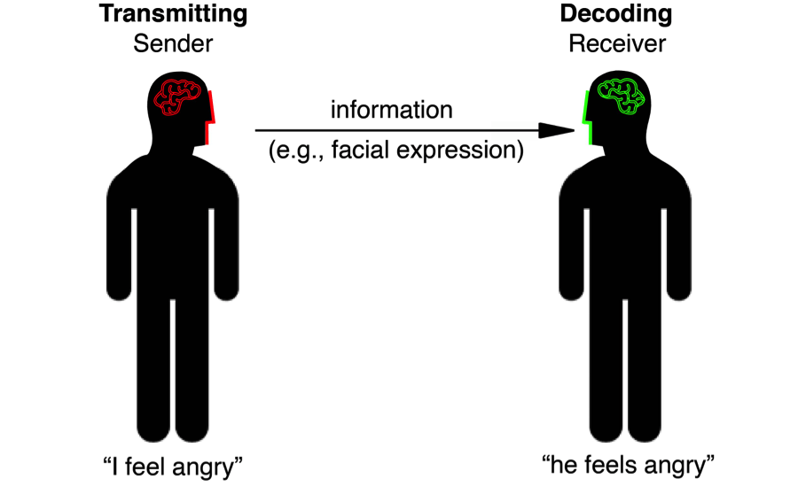 Understanding the Face as a Dynamic Communication Tool