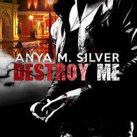 Già disponibile: Destroy Me di Anya M. Silver