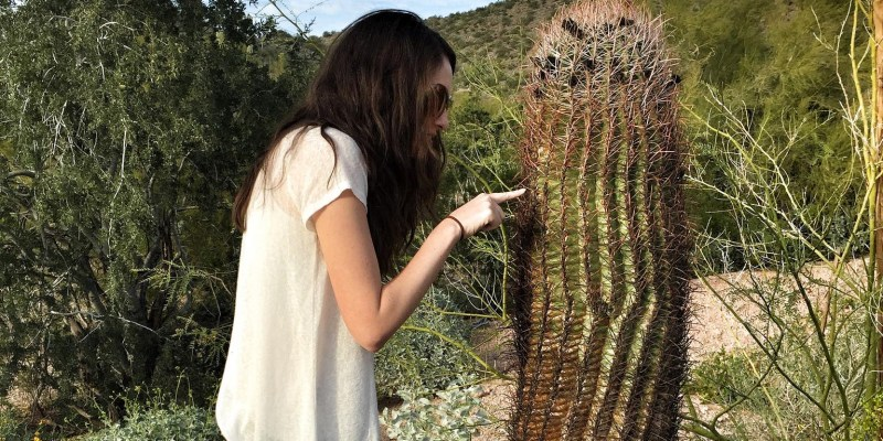 Touch cactus