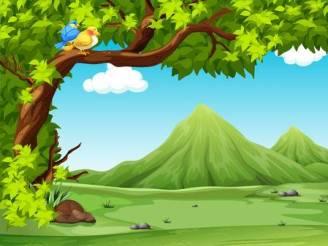 PHOTO OF NATURE - NATURE SMART