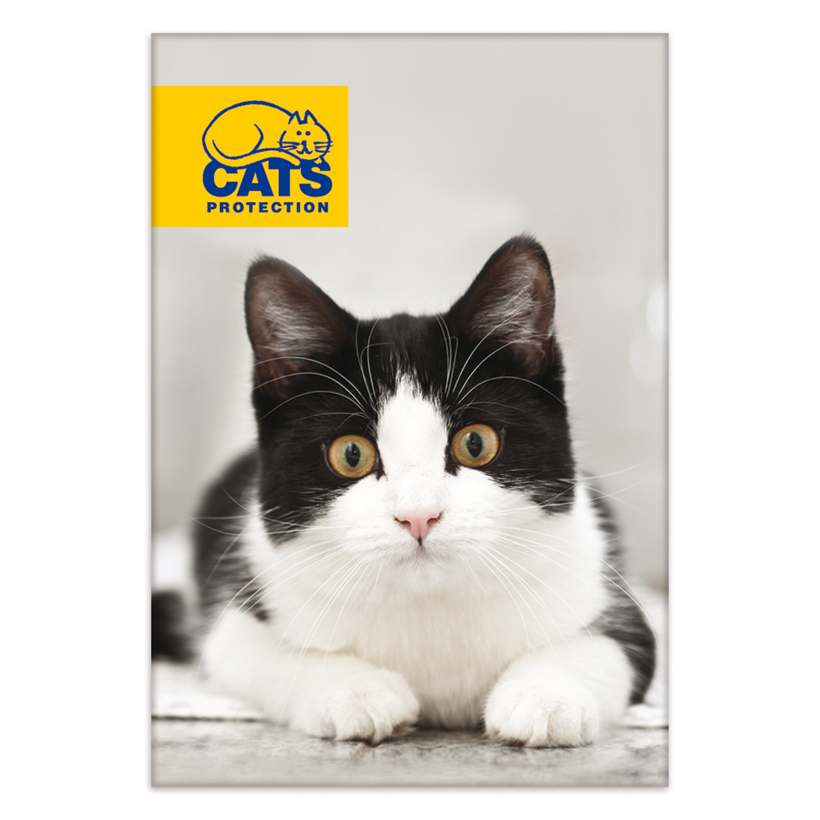Cats Protection Black Amp White Cat Magnet