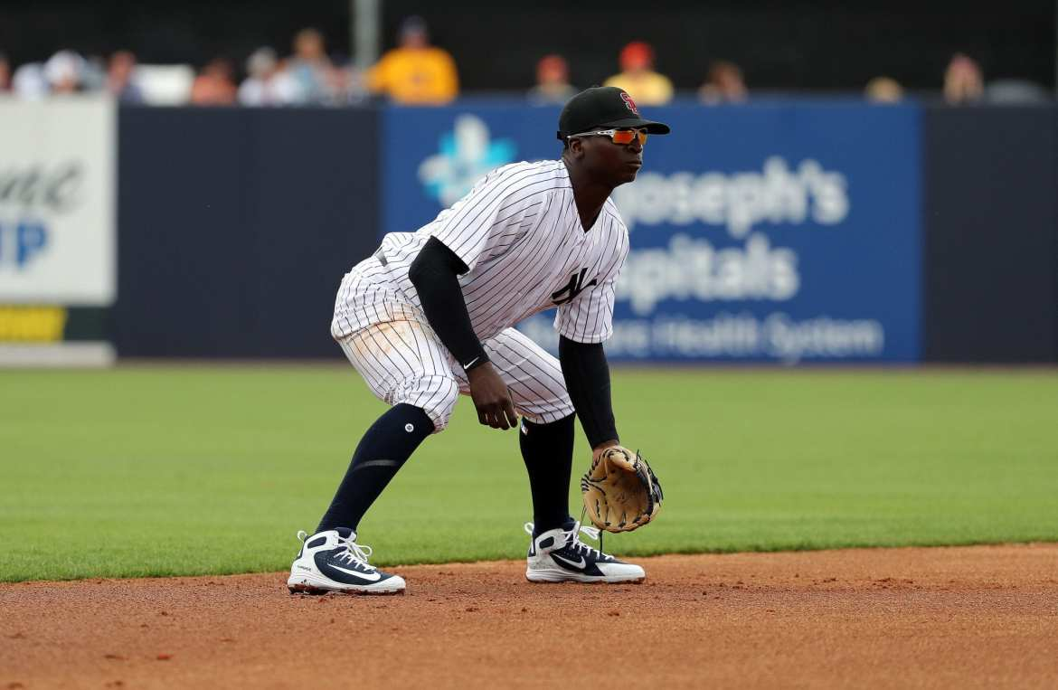 New York Yankees, Didi Gregorius