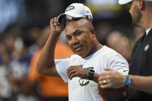 New York Jets, Hines Ward