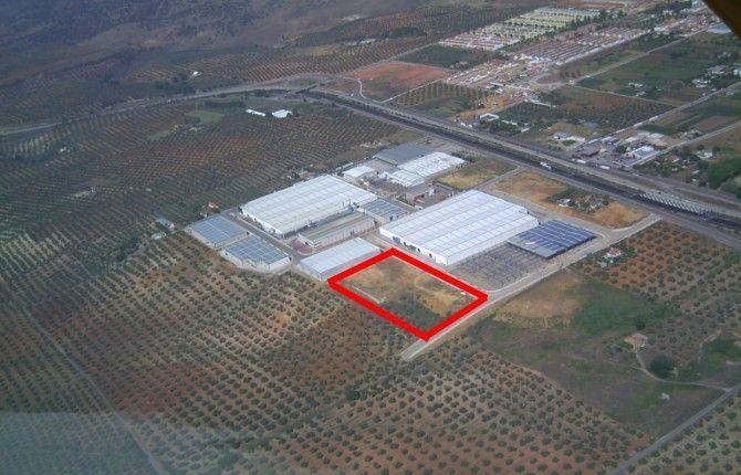 La empresa Takahata se instala en La Carolina (Jaén) y generará unos 1.000 puestos de empleo