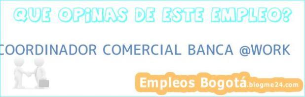 COORDINADOR COMERCIAL BANCA @WORK
