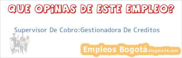Supervisor De Cobro:Gestionadora De Creditos