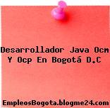 Desarrollador Java Ocm Y Ocp En Bogotá D.C