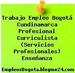 Trabajo Empleo Bogotá Cundinamarca Profesional Curriculista (Servicios Profesionales) Enseñanza