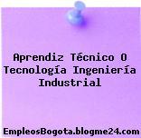 Aprendiz Técnico O Tecnología Ingeniería Industrial