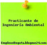 Practicante de Ingeniería Ambiental