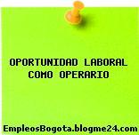 OPORTUNIDAD LABORAL COMO OPERARIO