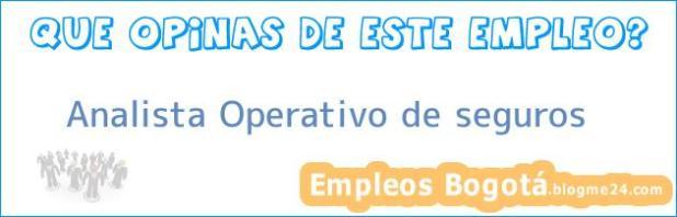 Analista Operativo de seguros