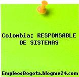 Colombia: RESPONSABLE DE SISTEMAS