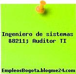 Ingeniero de sistemas &8211; Auditor TI