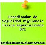Coordinador de Seguridad Vigilancia física especializada DVE