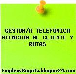 GESTOR/A TELEFONICA ATENCION AL CLIENTE Y RUTAS