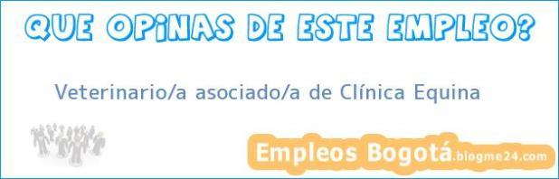Veterinario/a asociado/a de Clínica Equina