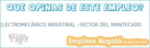 ELECTROMECÁNICO INDUSTRIAL -SECTOR DEL MANTECADO