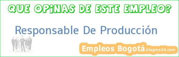 Responsable De Produccion