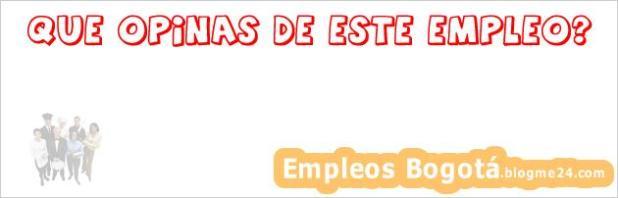 PROFESORES DE INGENIERIA INFORMATICA, INDUSTRIAL Y CIVIL