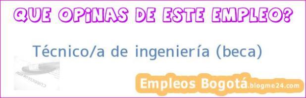 Técnico/a de ingeniería (beca)