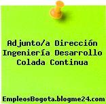 Adjunto/a Dirección Ingeniería Desarrollo Colada Continua