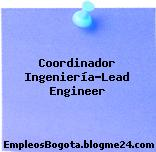 Coordinador Ingeniería-Lead Engineer