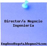 Director/a Negocio Ingeniería