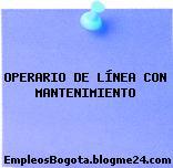 OPERARIO DE LÍNEA CON MANTENIMIENTO