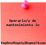 Operario/a de mantenimiento in