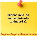 Operario/a de mantenimiento industrial