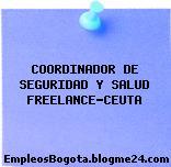 COORDINADOR DE SEGURIDAD Y SALUD FREELANCE-CEUTA