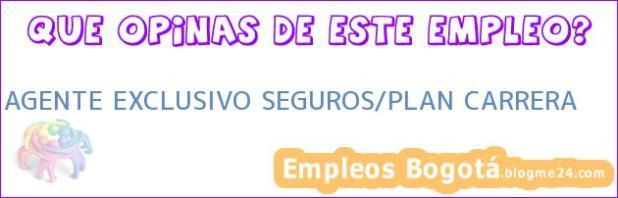 AGENTE EXCLUSIVO SEGUROS/PLAN CARRERA