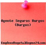 Agente Seguros Burgos (Burgos)