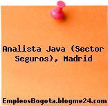 Analista Java (Sector Seguros) (Madrid)