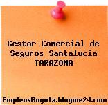 Gestor Comercial de Seguros Santalucia Tarazona