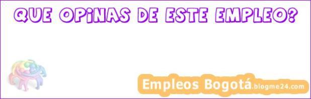 Administrador de Sistemas Temporal 1 año (Madrid)