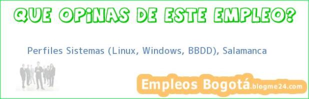 Perfiles Sistemas (Linux, Windows, BBDD), Salamanca