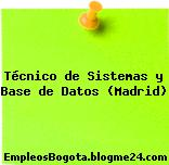 Técnico de Sistemas y Base de Datos (Madrid)