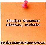 Técnico Sistemas Windows, Bizkaia