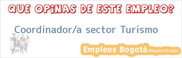Coordinador/a sector Turismo