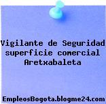 Vigilante de Seguridad superficie comercial Aretxabaleta