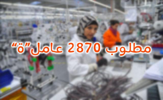 مطلوب 2.870 عامل(ة) المستوى الدراسي لايهم