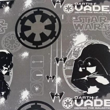 Darth Vader in Grey