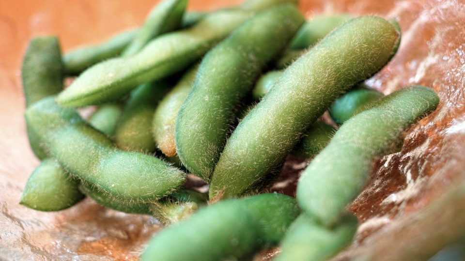 Can Soy Prevent and Treat Prostate Cancer?