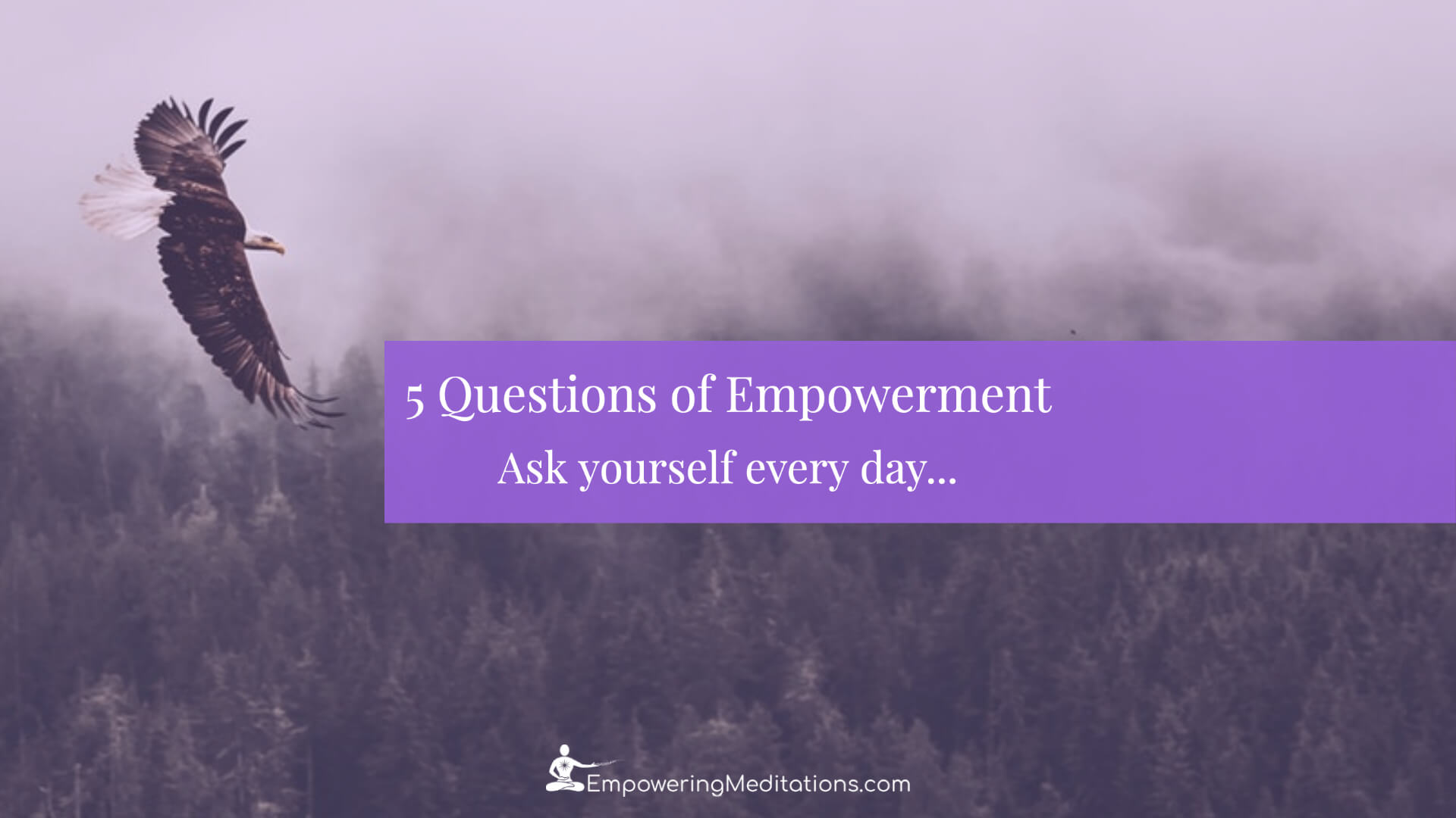 Blog - 5 Questions of Empowerment - Page