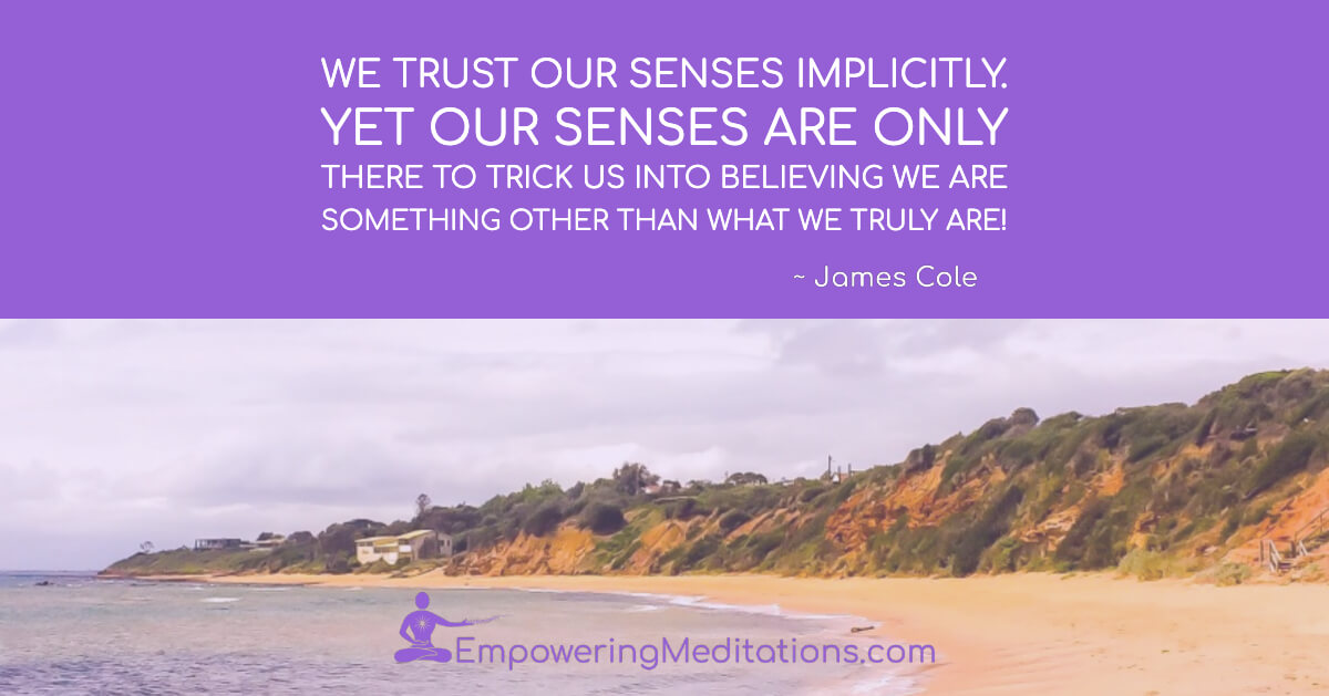 We trust our senses implicitly - Page